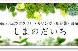 46.伊豆大島しまのだいち(ビジター)